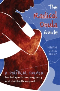 Cover for The Radical Doula Guide